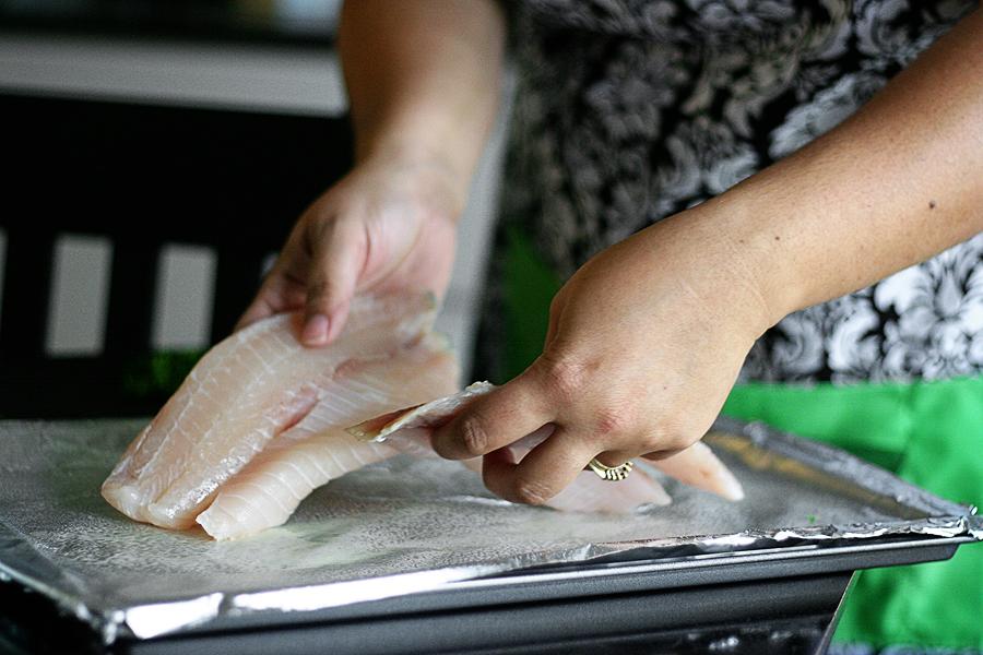 Fish 096